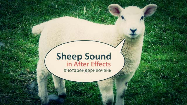 sheep-sound